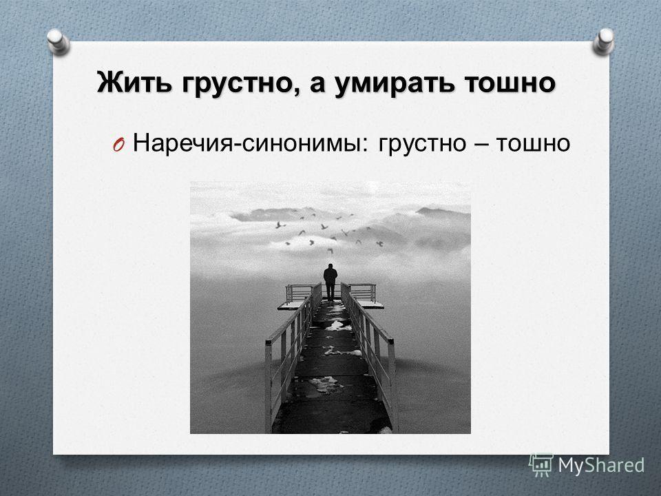 Без соли невкусно, а без хлеба несытно O Наречия-синонимы: невкусно-несытно