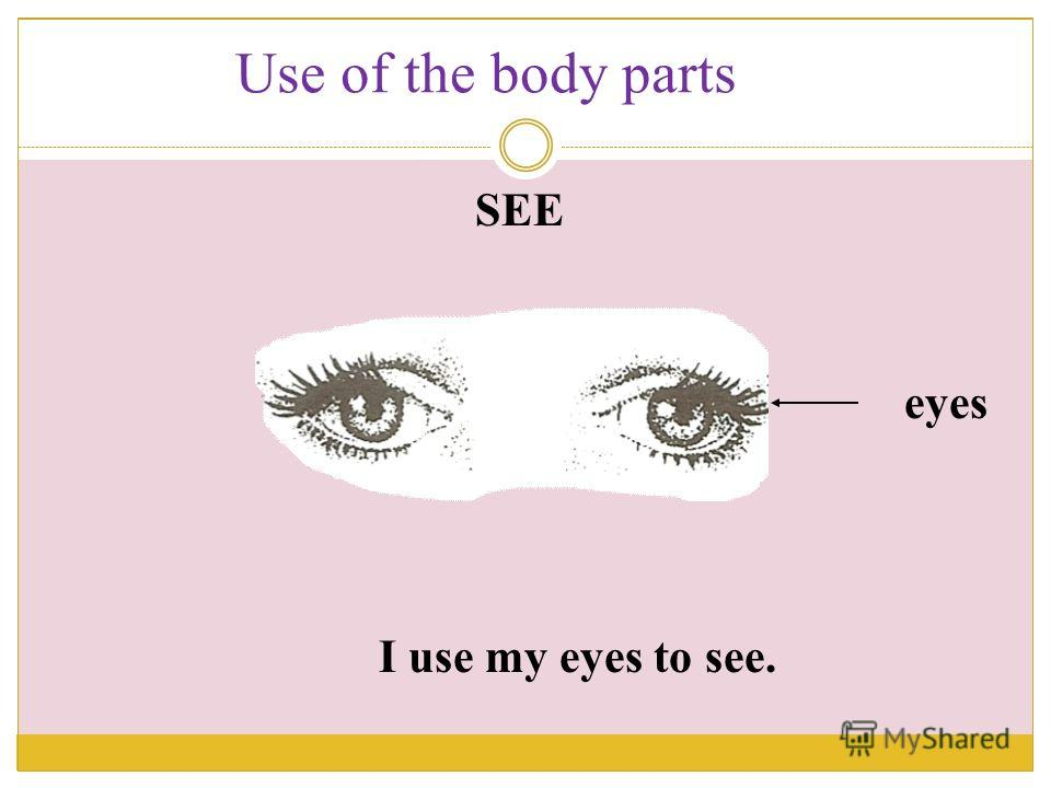 I use my eyes to see. eyes SEE Use of the body parts