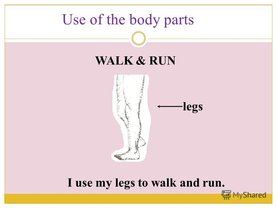 I use my legs to walk and run. legs WALK & RUN Use of the body parts