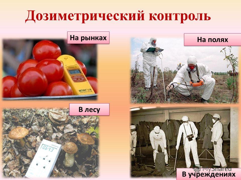Дозиметрический контроль На рынках В лесу На полях В учреждениях