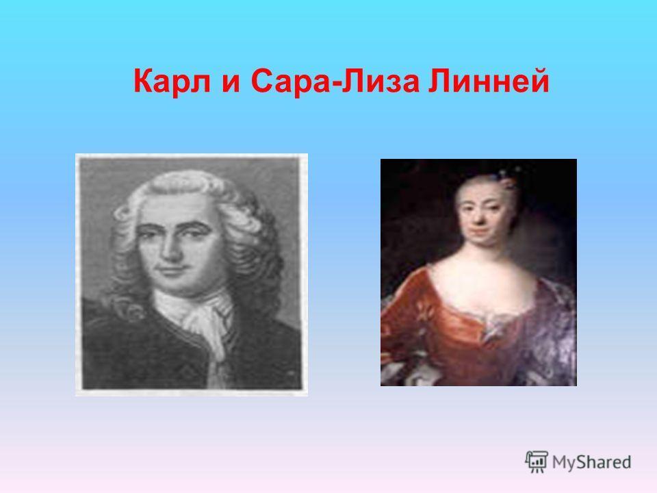 Карл и Сара-Лиза Линней