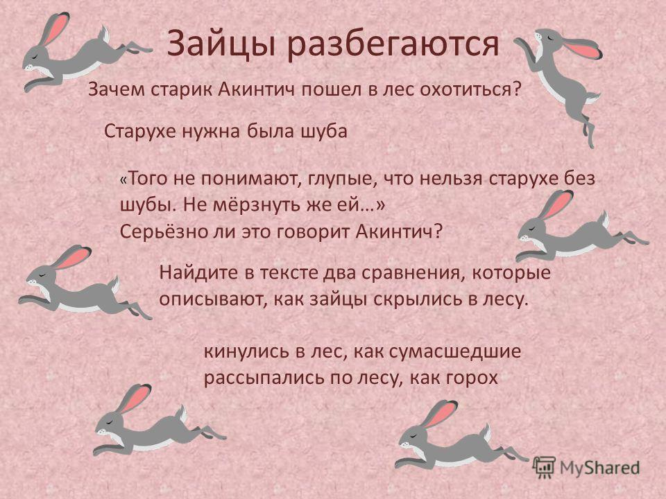 Зайцы разбегаются Зачем старик Акинтич пошел в лес охотиться? Найдите в тексте два сравнения, которые описывают, как зайцы скрылись в лесу. « Того не понимают, глупые, что нельзя старухе без шубы. Не мёрзнуть же ей…» Серьёзно ли это говорит Акинтич?