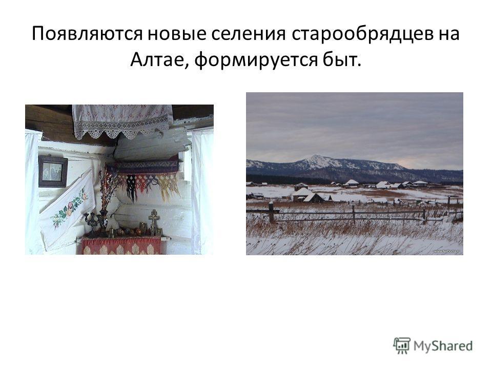 Появляются новые селения старообрядцев на Алтае, формируется быт.