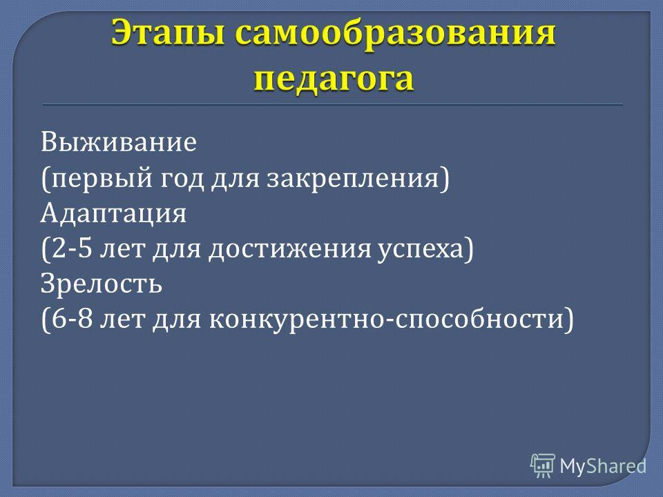 Выживание ( первый год для закрепления ) Адаптация (2-5 лет для достижения успеха ) Зрелость (6-8 лет для конкурентно - способности )