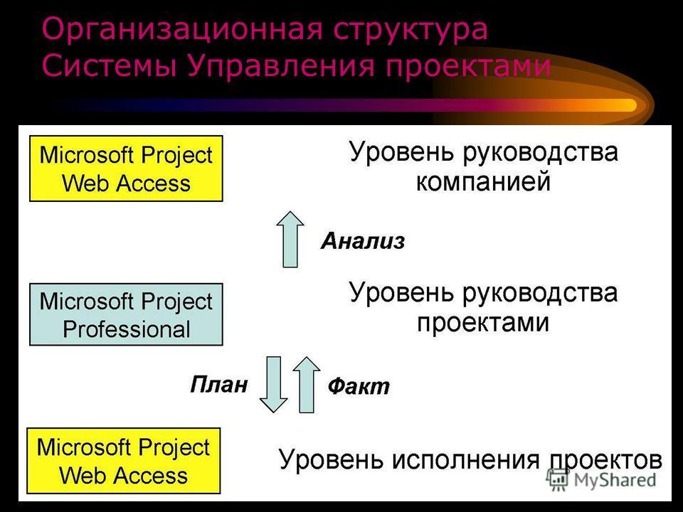 Организационная структура Системы Управления проектами