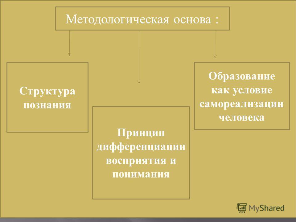 Методологическая основа : Структура познания Принцип дифференциации восприятия и понимания Образование как условие самореализации человека