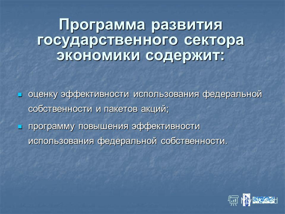Программа развития государственного сектора экономики содержит: оценку эффективности использования федеральной собственности и пакетов акций; оценку эффективности использования федеральной собственности и пакетов акций; программу повышения эффективно