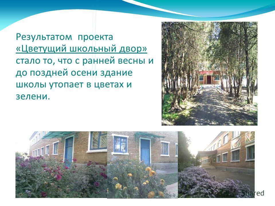 Результатом проекта «Цветущий школьный двор» стало то, что с ранней весны и до поздней осени здание школы утопает в цветах и зелени.
