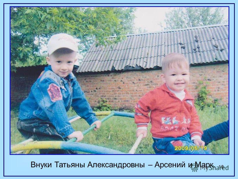 18 Внуки Татьяны Александровны – Арсений и Марк.