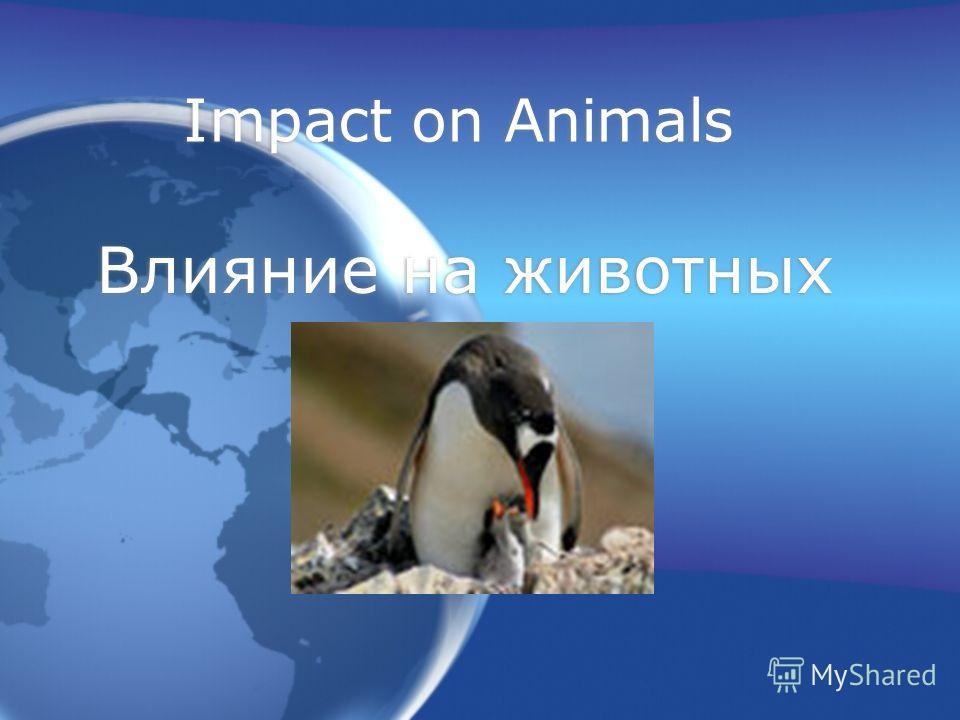 Impact on Animals Влияние на животных