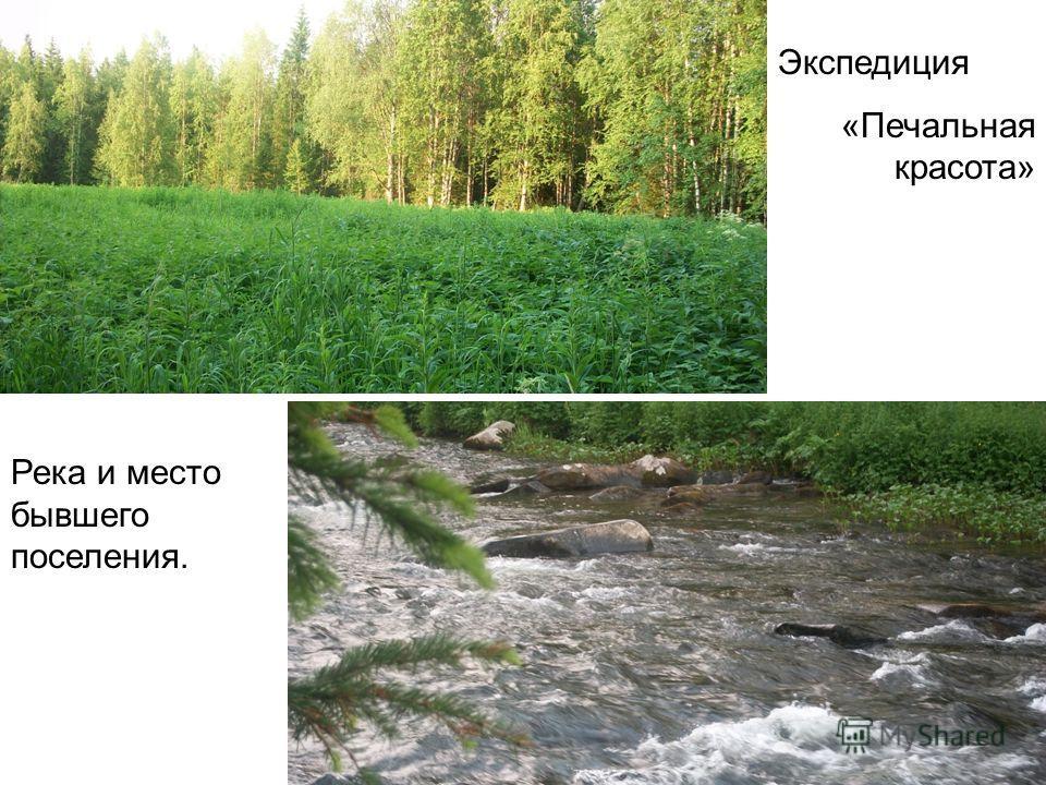 Экспедиция «Печальная красота» Река и место бывшего поселения.