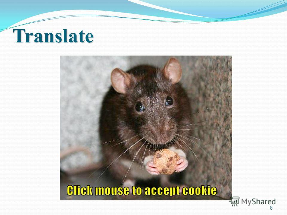 8 Translate