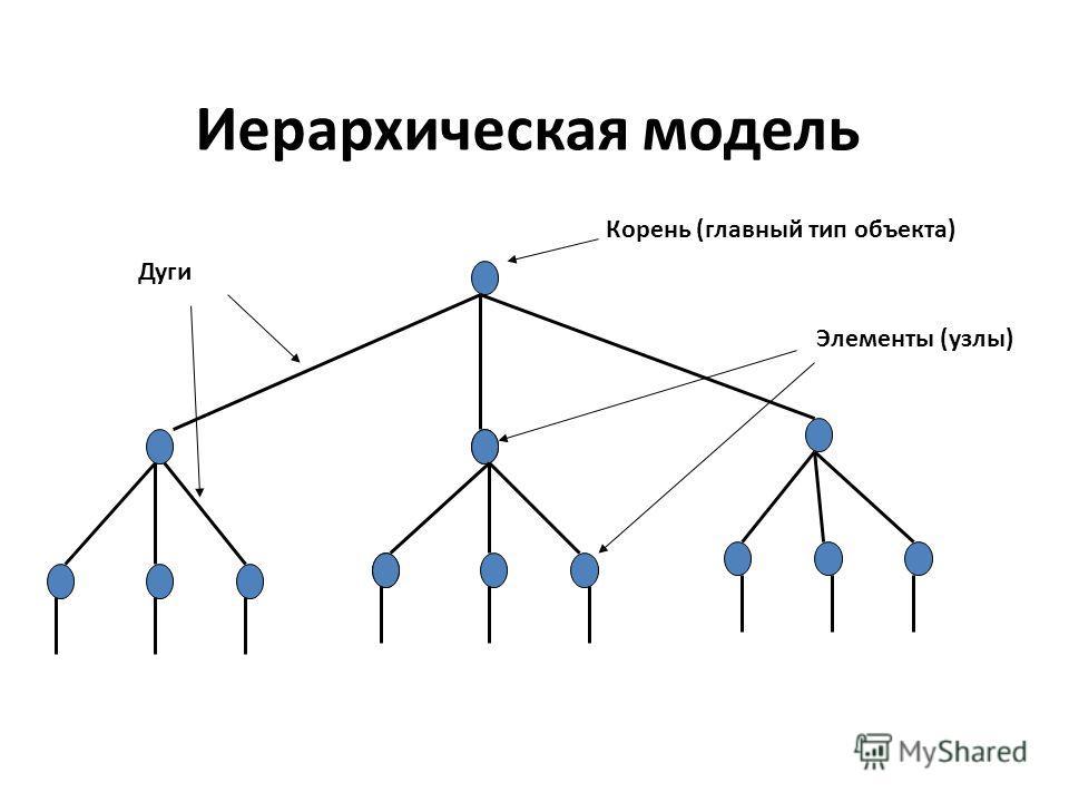 Иерархическая модель Корень (главный тип объекта) Дуги Элементы (узлы)