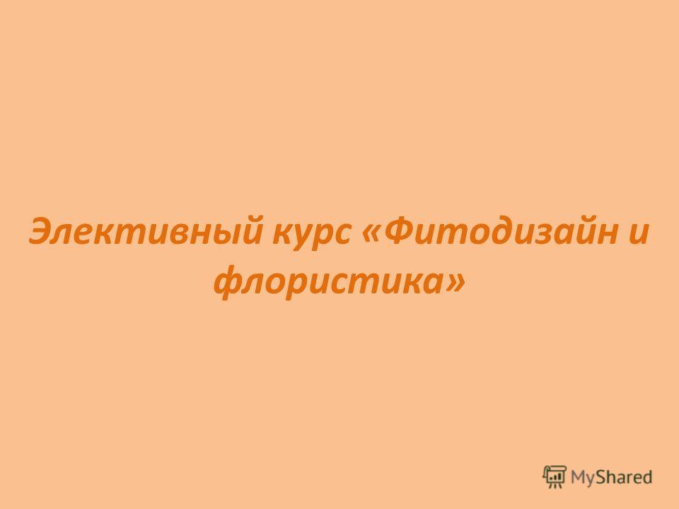 Элективный курс «Фитодизайн и флористика»