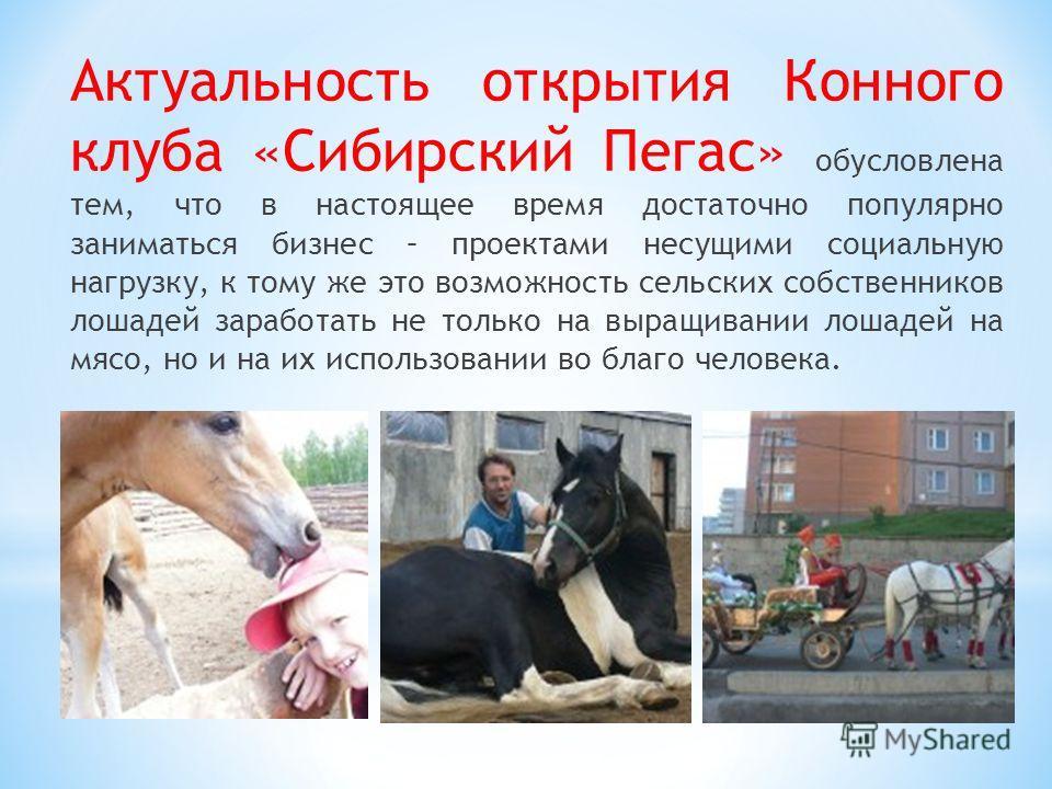 Актуальность открытия Конного клуба «Сибирский Пегас» обусловлена тем, что в настоящее время достаточно популярно заниматься бизнес – проектами несущими социальную нагрузку, к тому же это возможность сельских собственников лошадей заработать не тольк