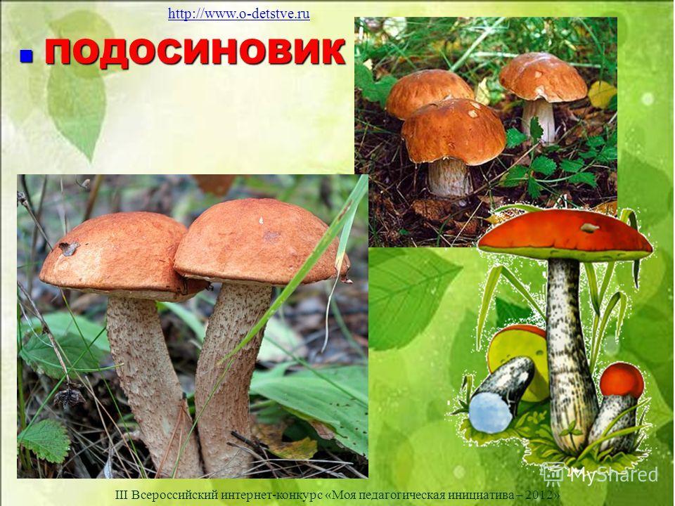 ПОДОСИНОВИК ПОДОСИНОВИК http://www.o-detstve.ru III Всероссийский интернет-конкурс «Моя педагогическая инициатива – 2012»