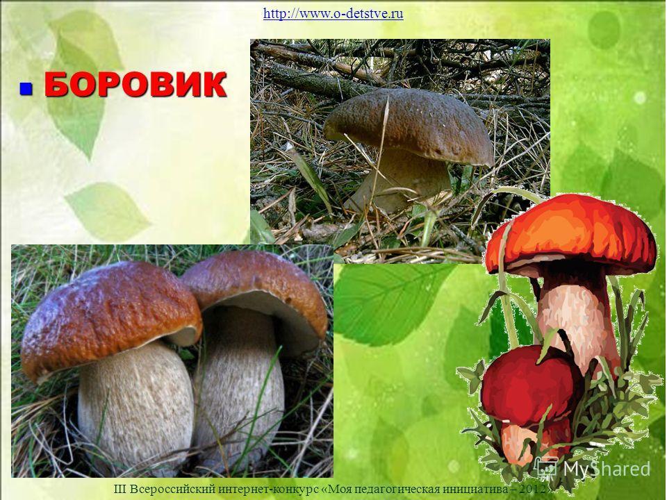 БОРОВИК БОРОВИК http://www.o-detstve.ru III Всероссийский интернет-конкурс «Моя педагогическая инициатива – 2012»