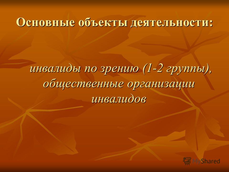 Основные объекты деятельности: инвалиды по зрению (1-2 группы), общественные организации инвалидов