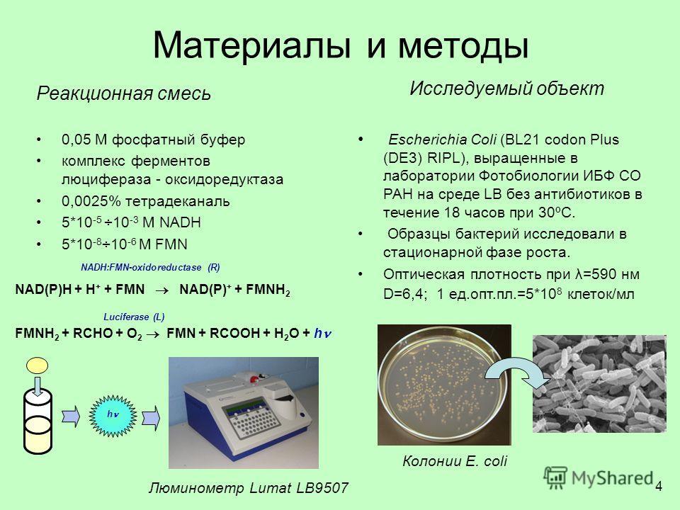 Материалы и методы Реакционная смесь 0,05 М фосфатный буфер комплекс ферментов люцифераза - оксидоредуктаза 0,0025% тетрадеканаль 5*10 -5 ÷10 -3 М NADH 5*10 -8 ÷10 -6 М FMN Исследуемый объект Escherichia Coli (BL21 codon Plus (DE3) RIPL), выращенные
