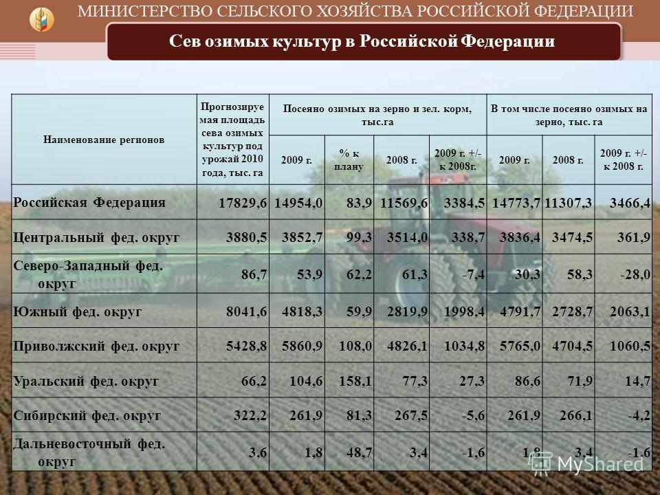 Сев озимых культур в Российской Федерации Наименование регионов Прогнозируе мая площадь сева озимых культур под урожай 2010 года, тыс. га Посеяно озимых на зерно и зел. корм, тыс.га В том числе посеяно озимых на зерно, тыс. га 2009 г. % к плану 2008