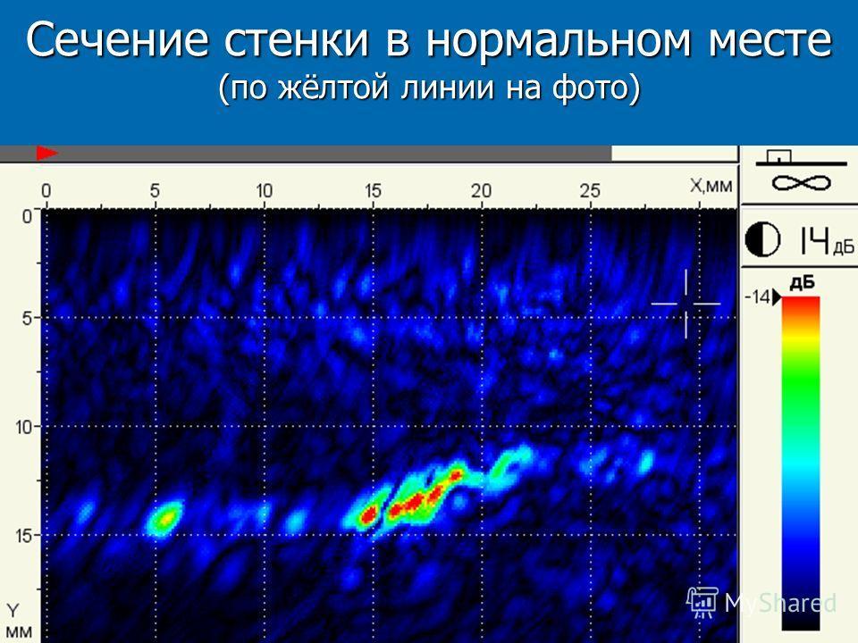 Сечение стенки в нормальном месте (по жёлтой линии на фото)