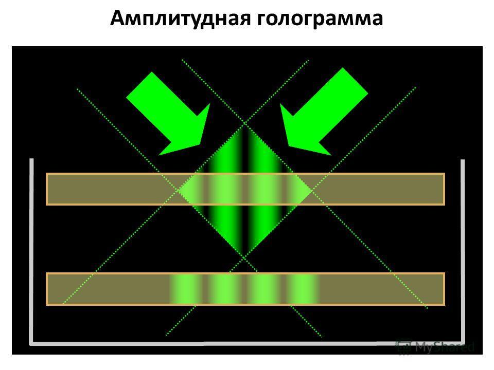 Амплитудная голограмма