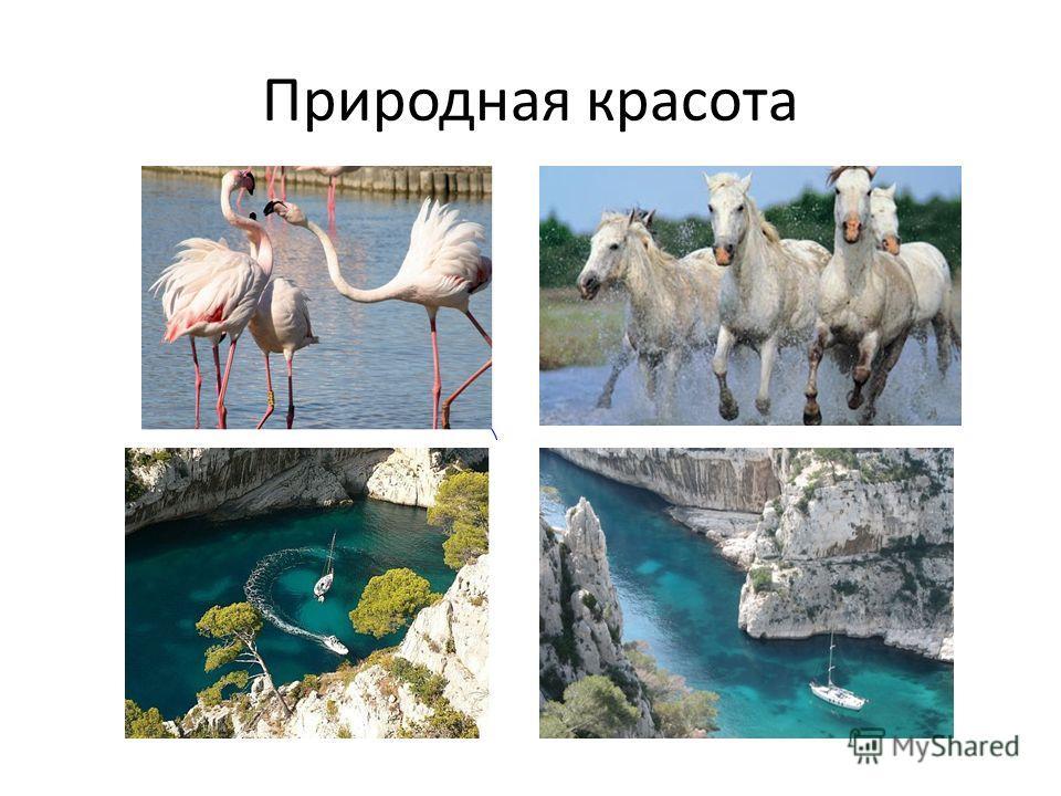 Природная красота