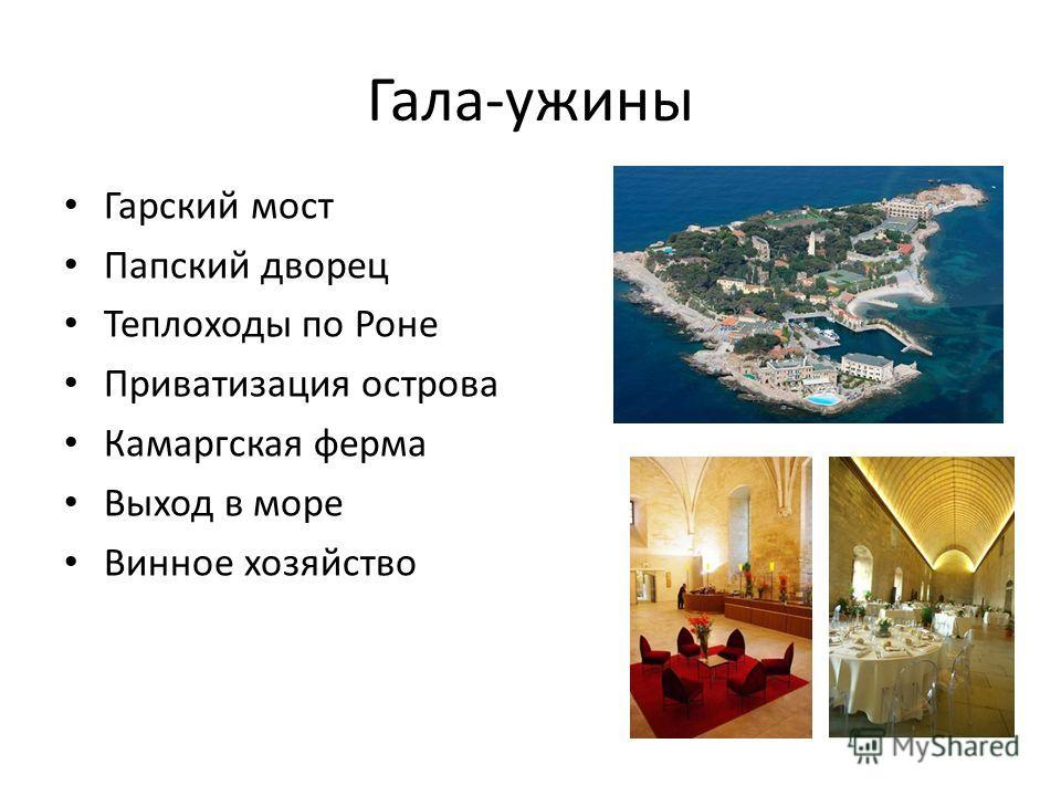 Гала-ужины Гарский мост Папский дворец Теплоходы по Роне Приватизация острова Камаргская ферма Выход в море Винное хозяйство