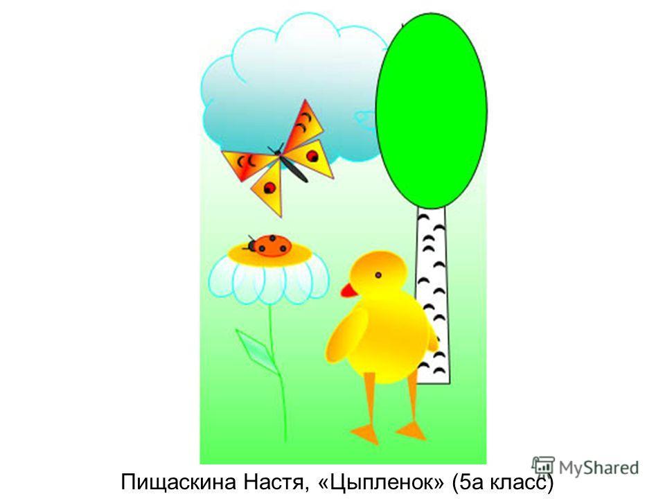 Пищаскина Настя, «Цыпленок» (5а класс)