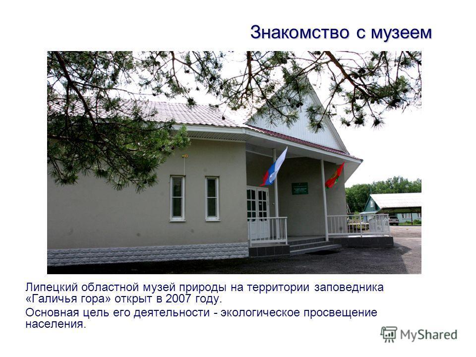 Липецкий областной музей природы на территории заповедника «Галичья гора» открыт в 2007 году. Основная цель его деятельности - экологическое просвещение населения. Знакомство с музеем
