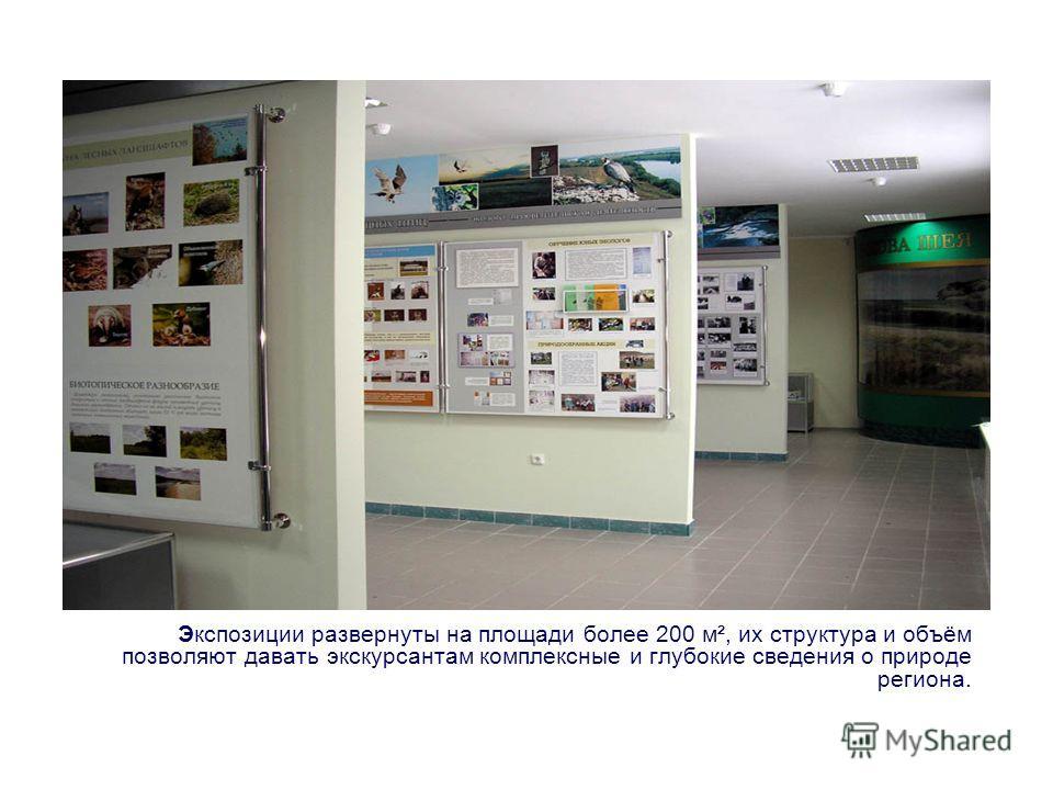 Экспозиции развернуты на площади более 200 м², их структура и объëм позволяют давать экскурсантам комплексные и глубокие сведения о природе региона.