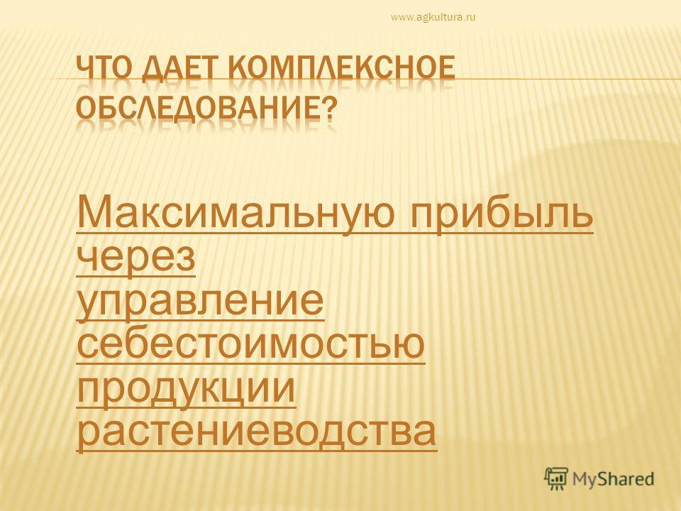 Максимальную прибыль через управление себестоимостью продукции растениеводства www.agkultura.ru
