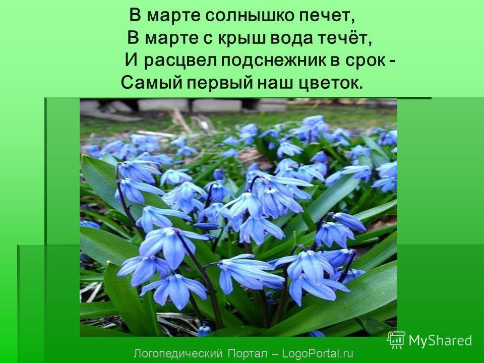 В марте солнышко печет, В марте с крыш вода течёт, И расцвел подснежник в срок - Самый первый наш цветок. Логопедический Портал – LogoPortal.ru