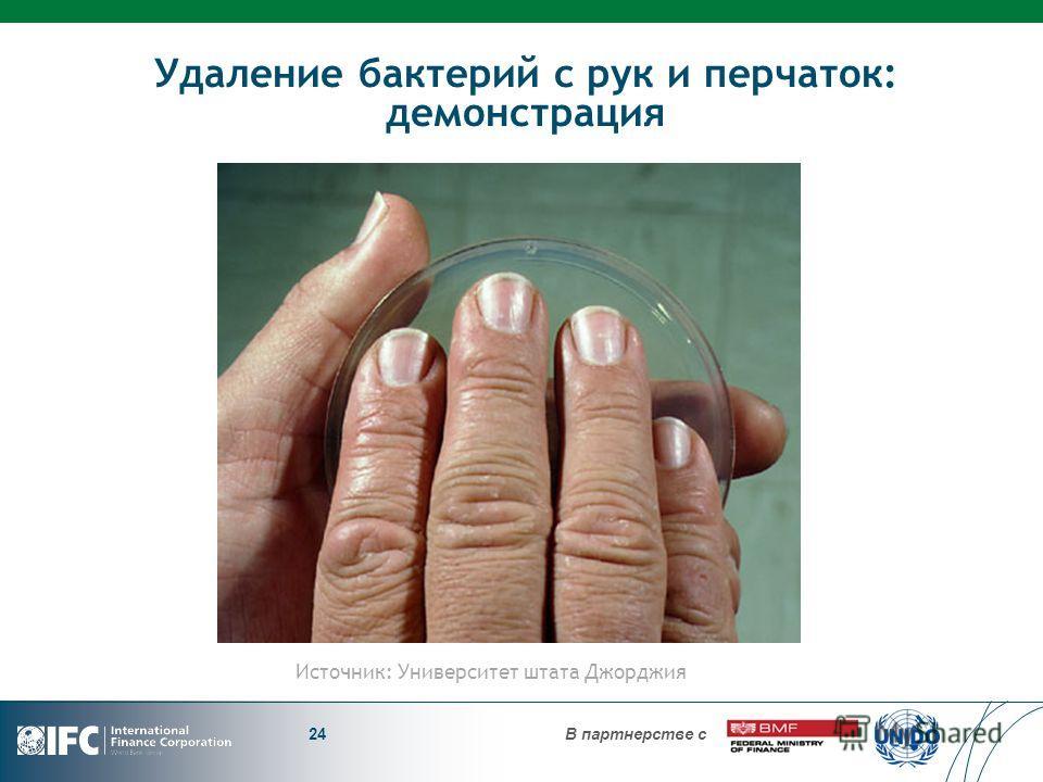 В партнерстве с Удаление бактерий с рук и перчаток: демонстрация 24 Источник: Университет штата Джорджия