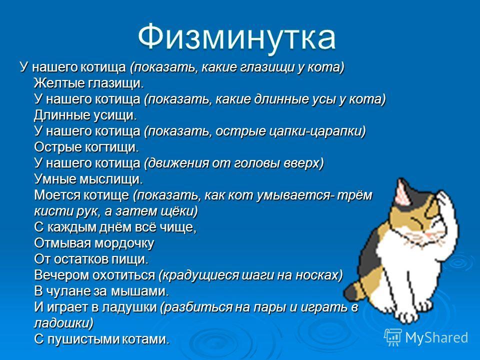 У нашего котища (показать, какие глазищи у кота) Желтые глазищи. У нашего котища (показать, какие длинные усы у кота) Длинные усищи. У нашего котища (показать, острые цапки-царапки) Острые когтищи. У нашего котища (движения от головы вверх) Умные мыс