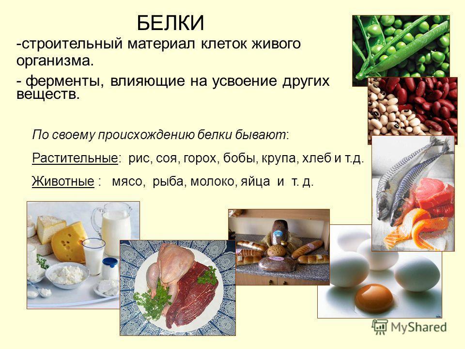БЕЛКИ -строительный материал клеток живого организма. - ферменты, влияющие на усвоение других веществ. По своему происхождению белки бывают: Растительные: рис, соя, горох, бобы, крупа, хлеб и т.д. Животные : мясо, рыба, молоко, яйца и т. д.