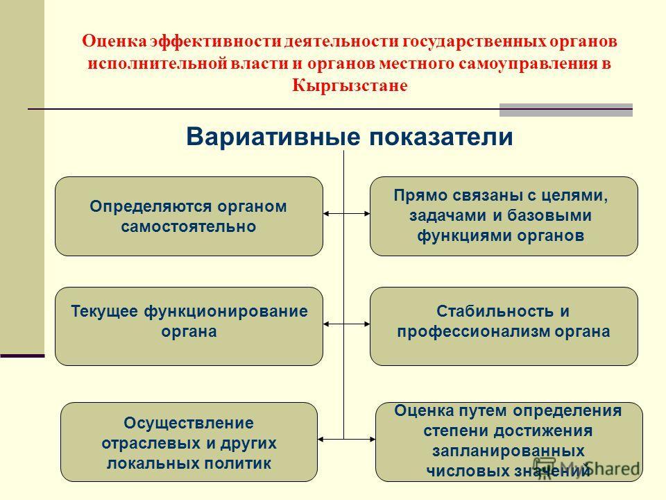 Вариативные показатели Оценка эффективности деятельности государственных органов исполнительной власти и органов местного самоуправления в Кыргызстане Определяются органом самостоятельно Прямо связаны с целями, задачами и базовыми функциями органов Т