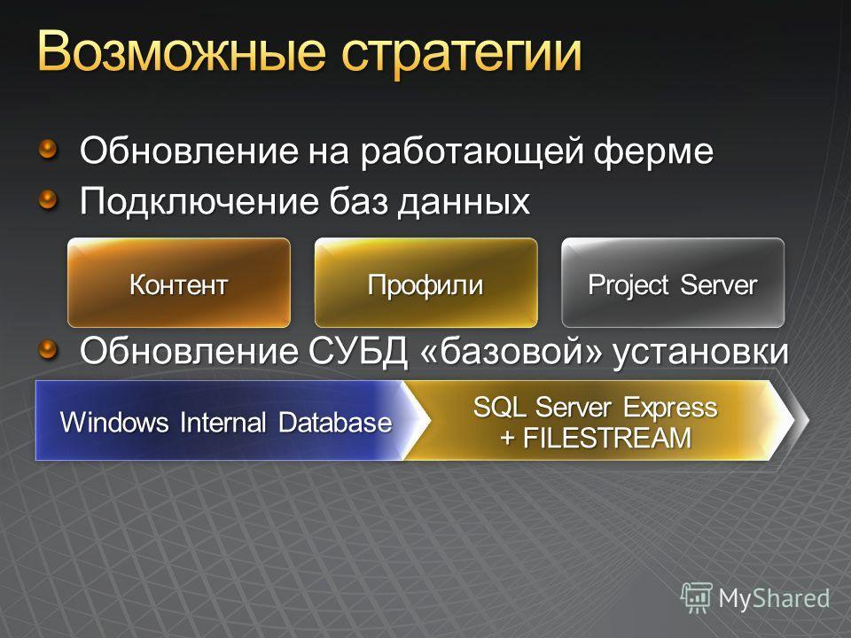 Project Server ПрофилиПрофилиКонтентКонтент SQL Server Express + FILESTREAM Windows Internal Database