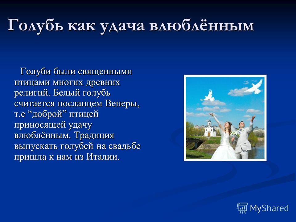 Голубь как удача влюблённым Голуби были священными птицами многих древних религий. Белый голубь считается посланцем Венеры, т.е доброй птицей приносящей удачу влюблённым. Традиция выпускать голубей на свадьбе пришла к нам из Италии. Голуби были свяще