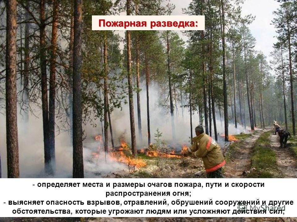 Пожарная разведка: - определяет места и размеры очагов пожара, пути и скорости распространения огня; - выясняет опасность взрывов, отравлений, обрушений сооружений и другие обстоятельства, которые угрожают людям или усложняют действия сил;