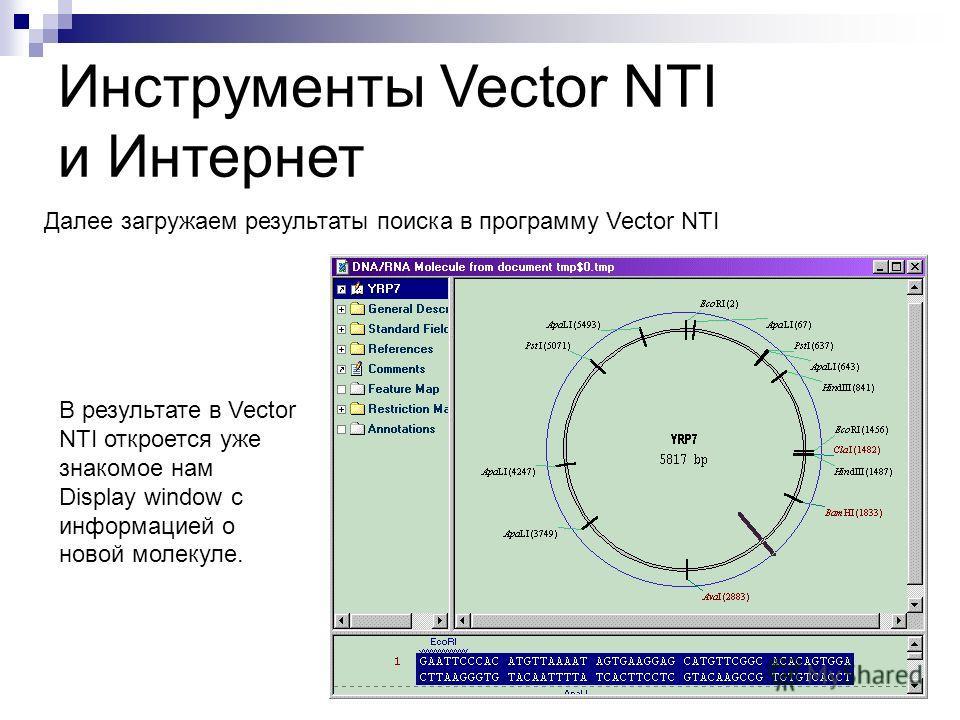 Инструменты Vector NTI и Интернет Далее загружаем результаты поиска в программу Vector NTI В результате в Vector NTI откроется уже знакомое нам Display window с информацией о новой молекуле.