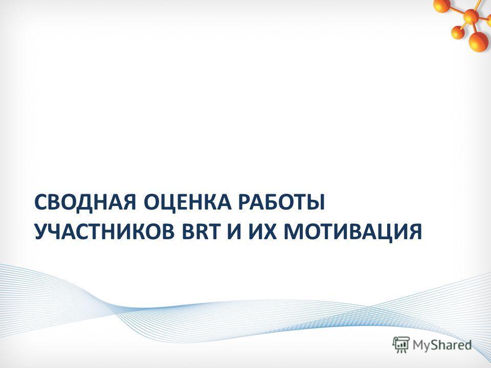 СВОДНАЯ ОЦЕНКА РАБОТЫ УЧАСТНИКОВ BRT И ИХ МОТИВАЦИЯ