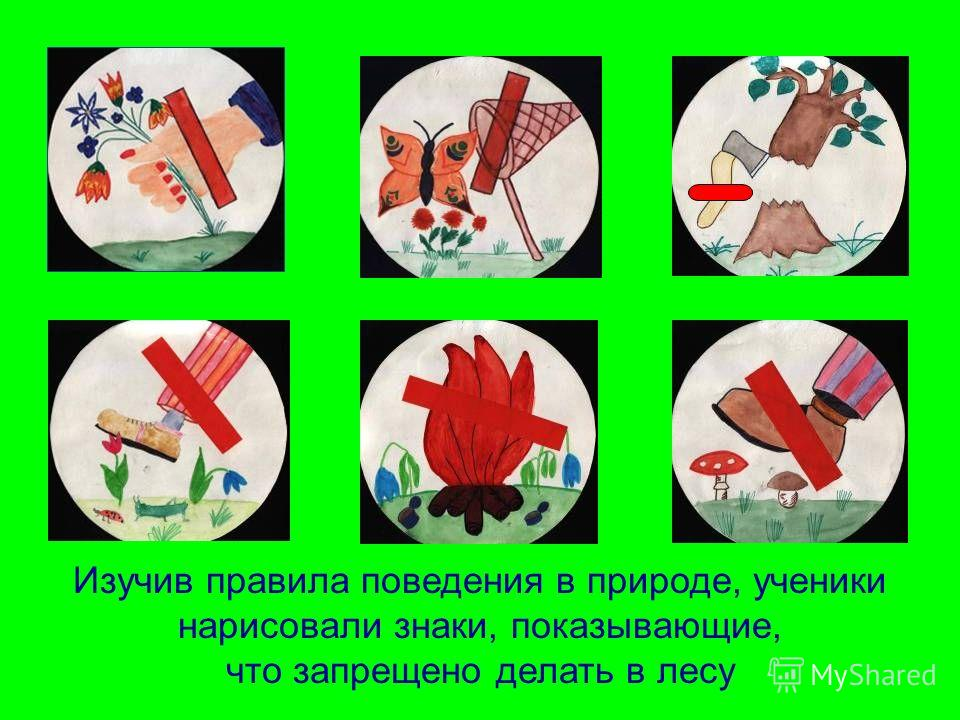 Изучив правила поведения в природе, ученики нарисовали знаки, показывающие, что запрещено делать в лесу