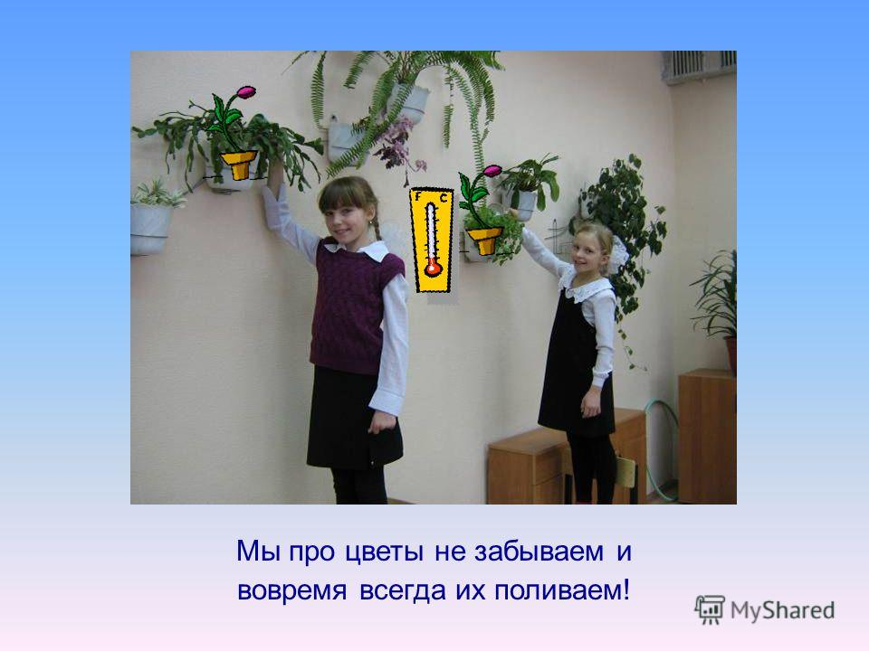 Мы про цветы не забываем и вовремя всегда их поливаем!