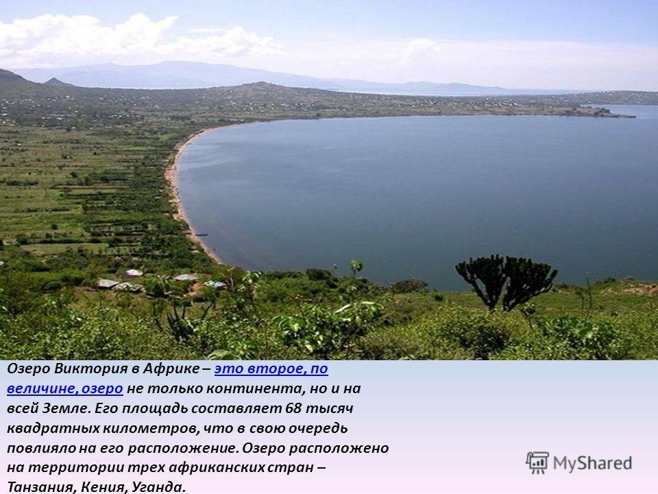 Озеро Виктория в Африке – это второе, по величине, озеро не только континента, но и на всей Земле. Его площадь составляет 68 тысяч квадратных километров, что в свою очередь повлияло на его расположение. Озеро расположено на территории трех африкански