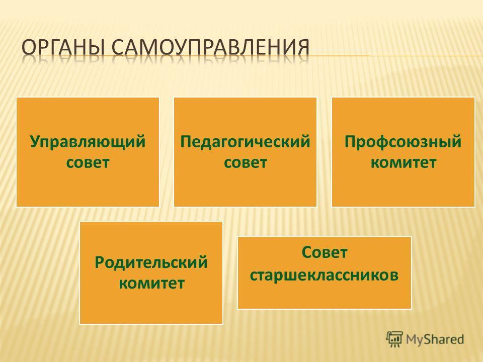 Управляющий совет Педагогический совет Профсоюзный комитет Родительский комитет Совет старшеклассников