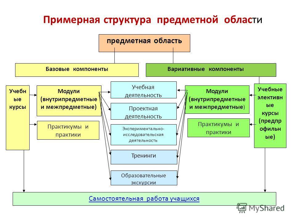 Примерная структура предметной области предметная область Базовые компоненты Учебн ые курсы Модули (внутрипредметные и межпредметные) Практикумы и практики Самостоятельная работа учащихся Экспериментально- исследовательская деятельность Проектная дея