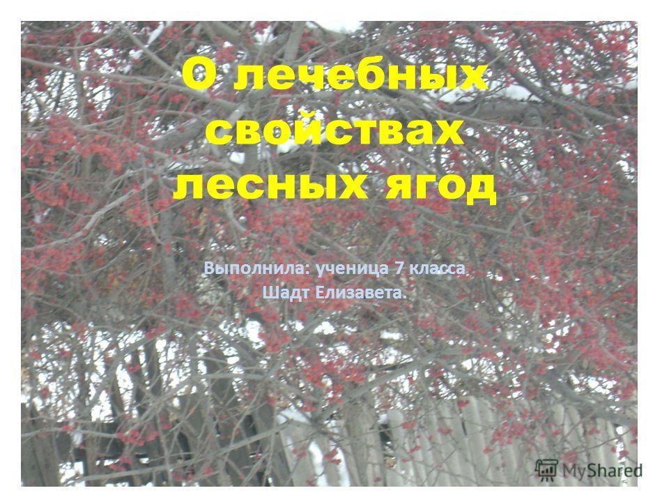 О лечебных свойствах лесных ягод Выполнила: ученица 7 класса Шадт Елизавета.