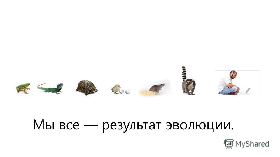 Мы все результат эволюции.