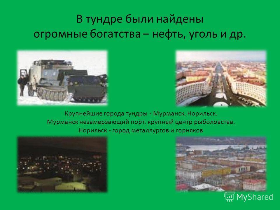 В тундре были найдены огромные богатства – нефть, уголь и др. Крупнейшие города тундры - Мурманск, Норильск. Мурманск незамерзающий порт, крупный центр рыболовства. Норильск - город металлургов и горняков